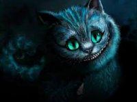 chat cheschire.jpg