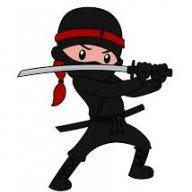 Ninjabulle