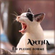 Antha